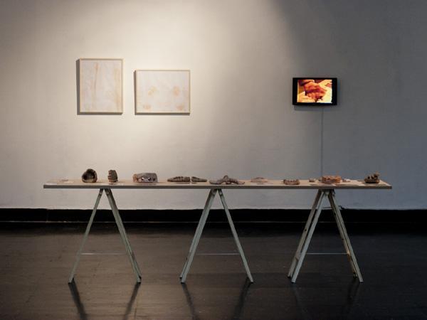 Esculturas y Video